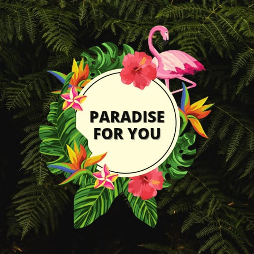 Paradise for you